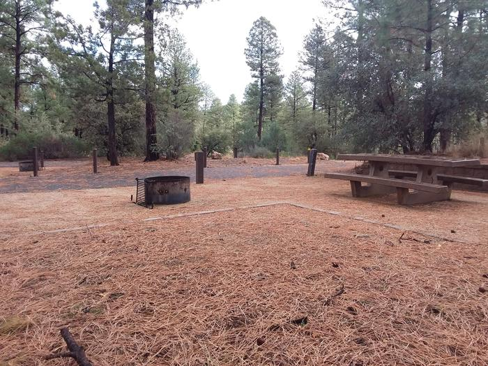 Hilltop Campground Loop C Site 37: table, fire pit, tent padHilltop Campground Loop C Site 37