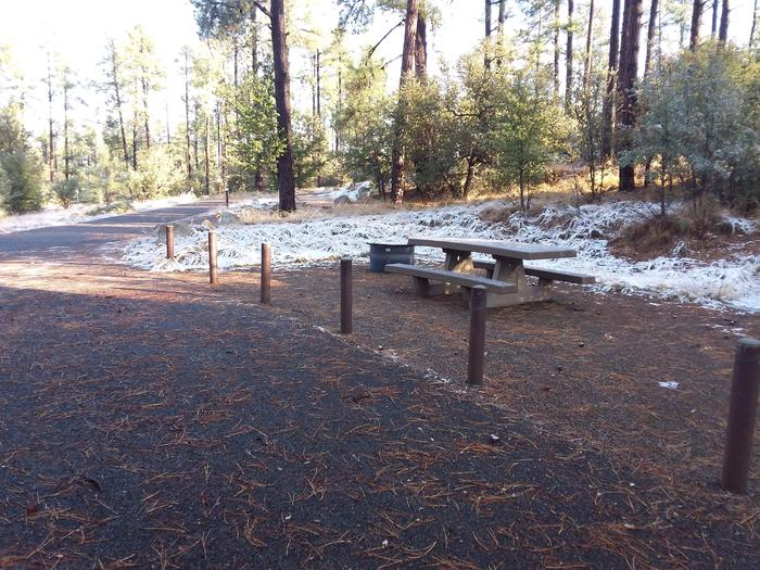 Campsite 13 with a picnic table, campfire ring and an open surface for tent placement