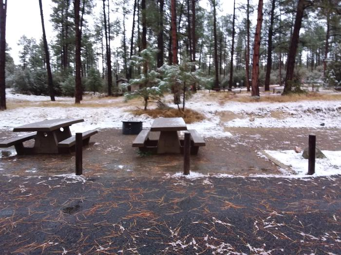 Campsite 17 with picnic tables and a campfire ring