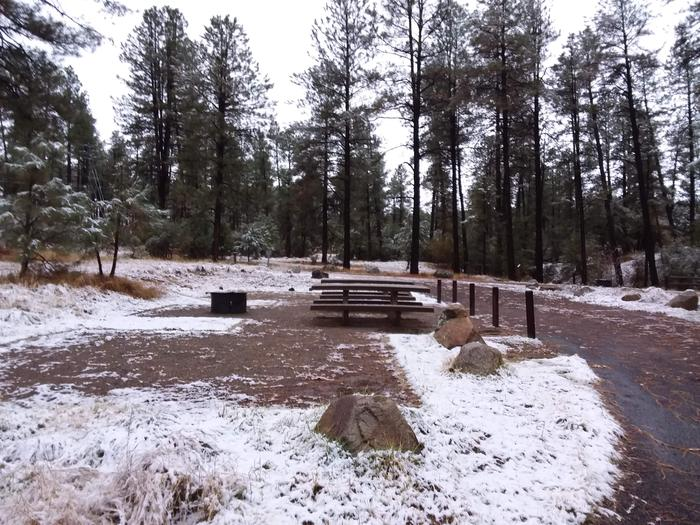 Campsite 17 with picnic tables, a campfire ring and an open space for tent placement