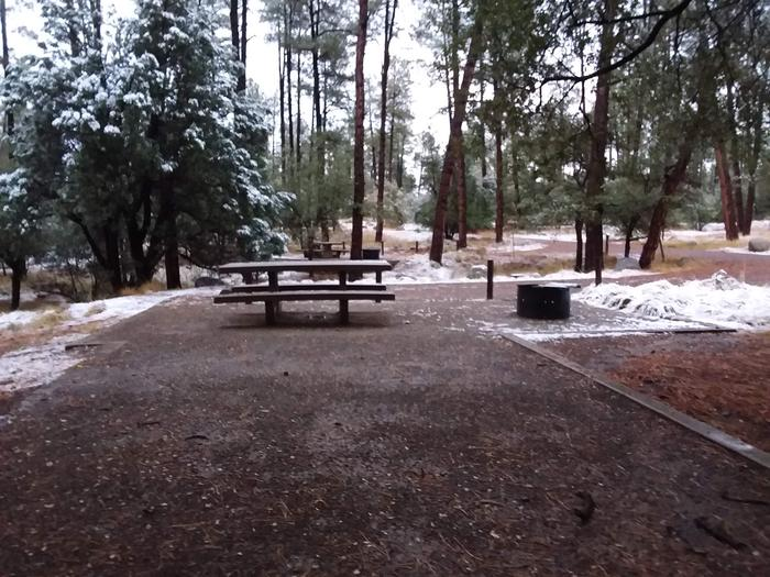 Campsite 19 with a picnic table, campfire ring and an open space for tent placement