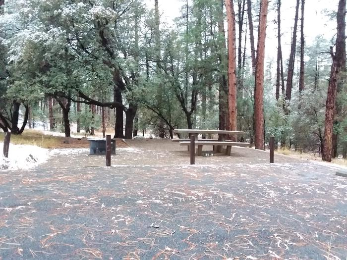 Campsite 19 with a picnic table, campfire ring and paved parking space