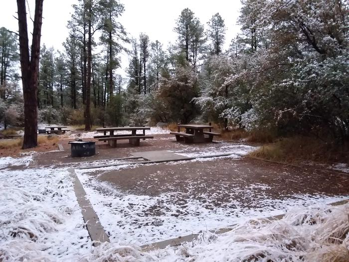 Campsite 23 with picnic tables, a campfire ring and an open space for tent placement