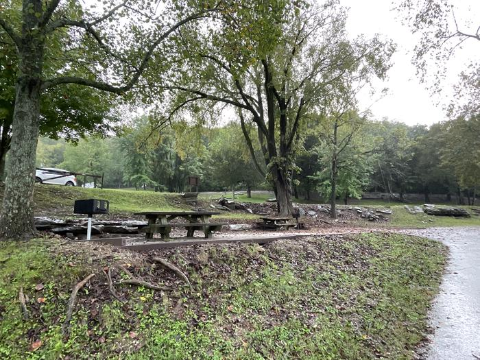 A photo of Site 034 of Loop TCLP at FLOATING MILL PARK with Picnic Table, Fire Pit