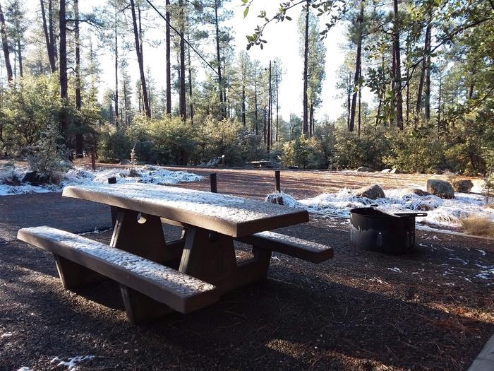 Campsite 27 picnic table and campfire ring