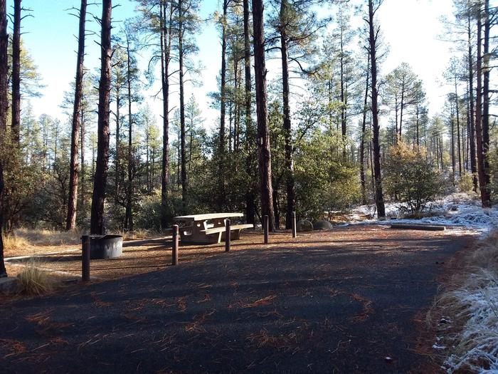 Campsite 28 with a picnic table, campfire ring and paved parking space