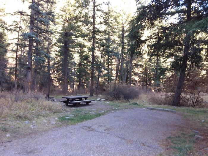 Site 3 with a picnic table, a fire ring, and parking area.