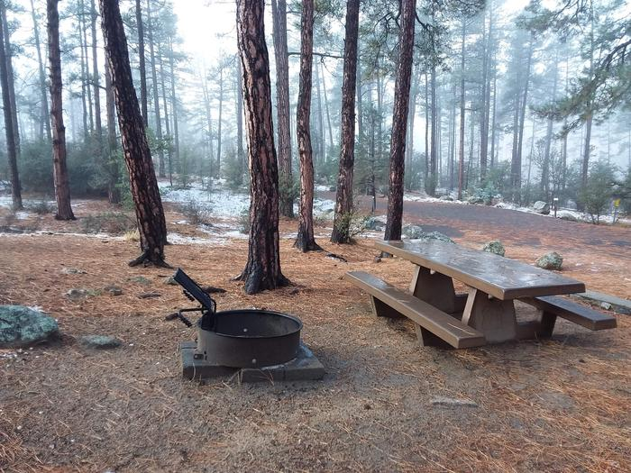 Campsite 36 picnic table and campfire ring
