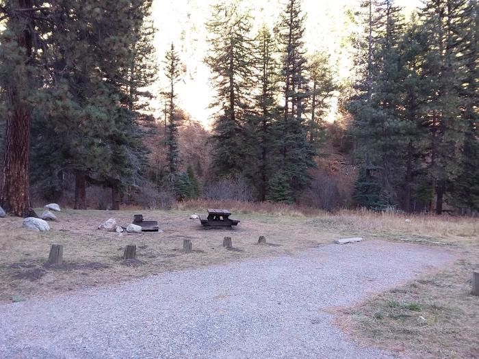 Site 7 with a picnic table, fire ring, and parking area.