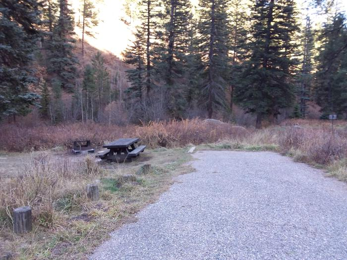 Site 8 with a picnic table, fire ring, and parking.