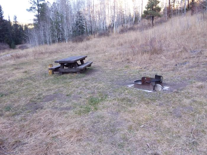 Site 11 with a picnic table and fire ring. Walk-in campsite.