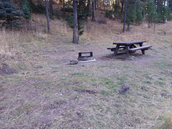 Site 12 with a picnic table and campfire ring. Walk-in campsite.