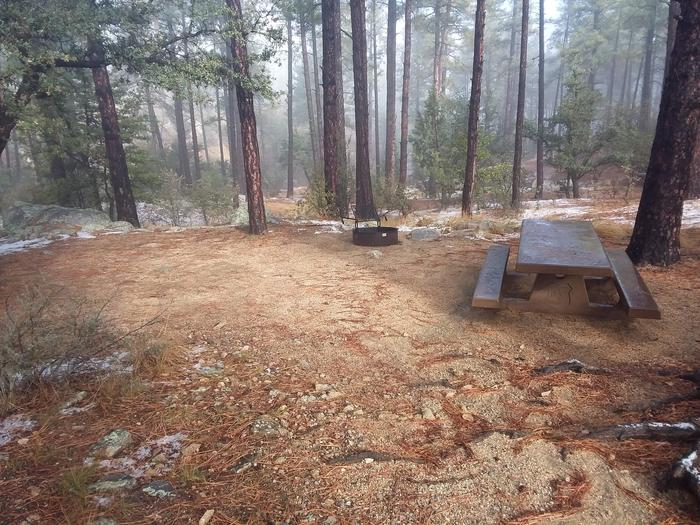 Campsite 38 with a picnic table, campfire ring and an open space for tent placement