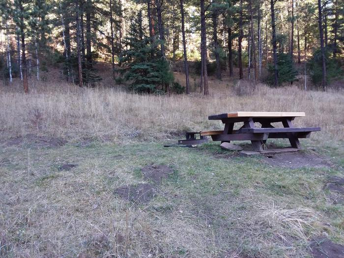 Site 13 with a picnic table and fire ring.