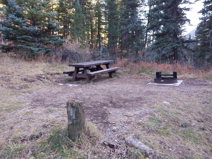 Site 15 with a picnic table and fire ring. Walk-in campsite.