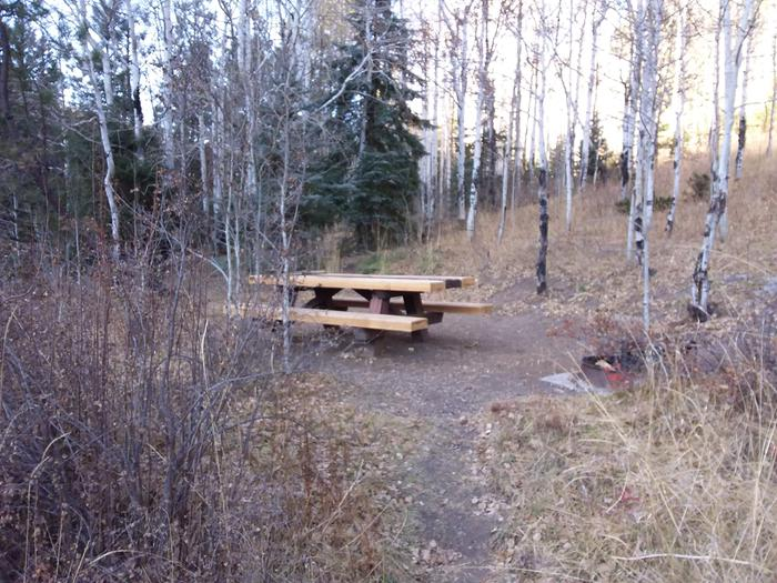 Site 16 with a picnic table and fire ring. Walk-in campsite.