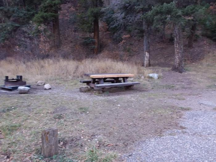 Site 18 with a picnic table, fire ring, and parking.