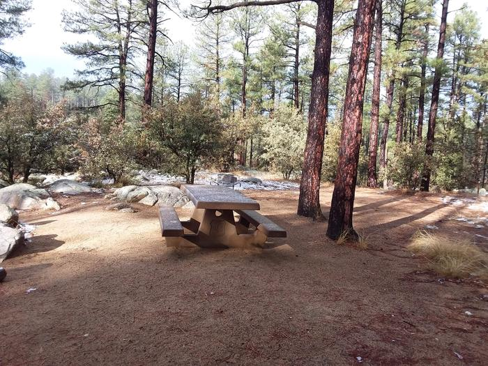 Campsite 40 with a picnic table, campfire ring and an open space for tent placement