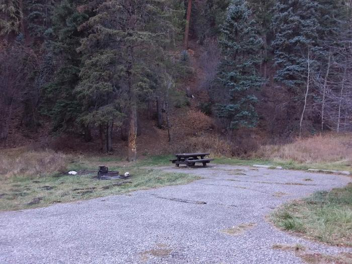 Site 22 with a picnic table, campfire ring, and parking.
