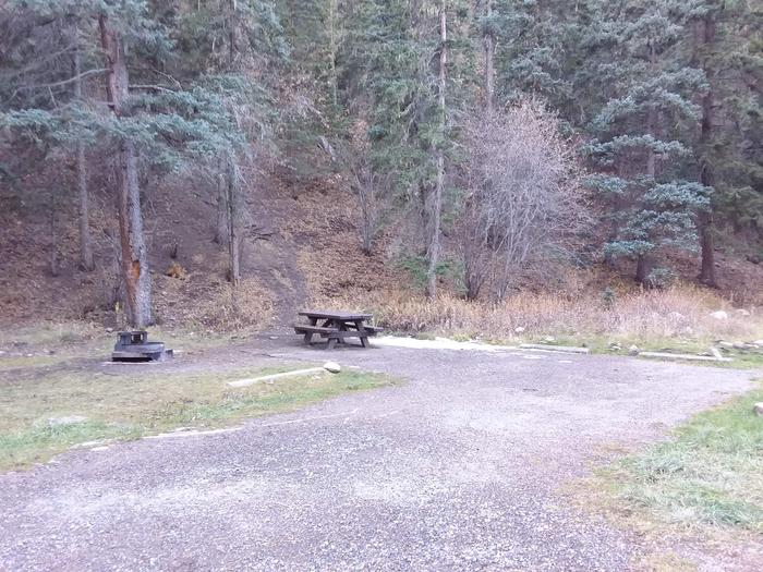Site 24 with a picnic table, fire ring, and parking.