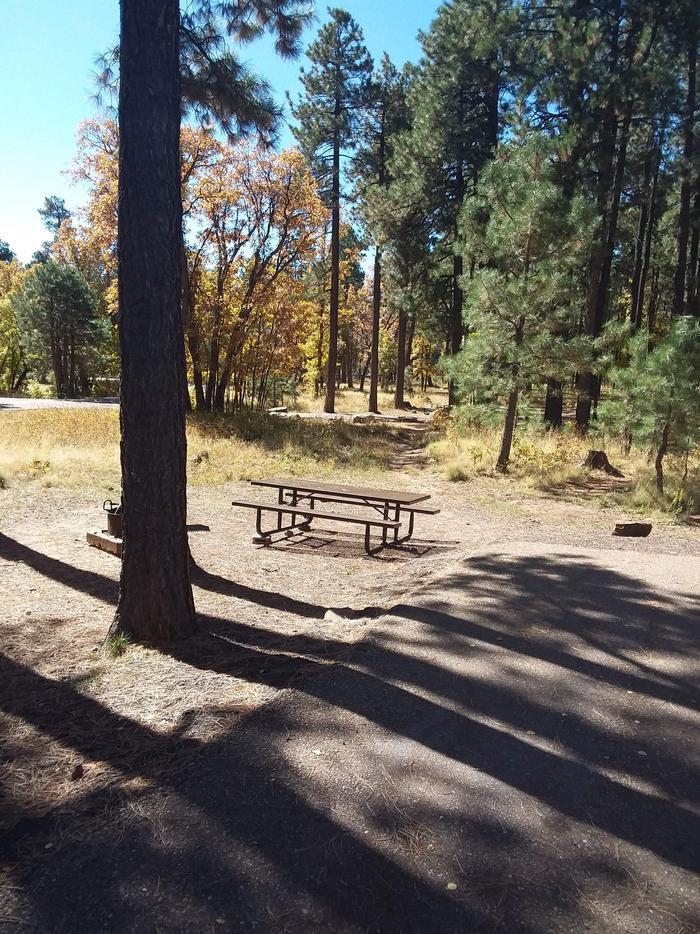 Aspen (AZ) CG: Site 118Aspen (AZ)