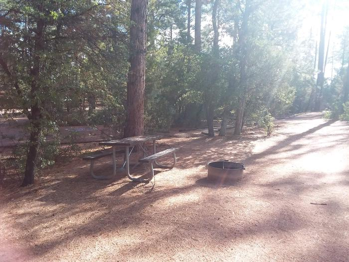 Houston Mesa, Black Bear Loop site #02 picnic table and Campfire ringHouston Mesa, Black Bear Loop site #02