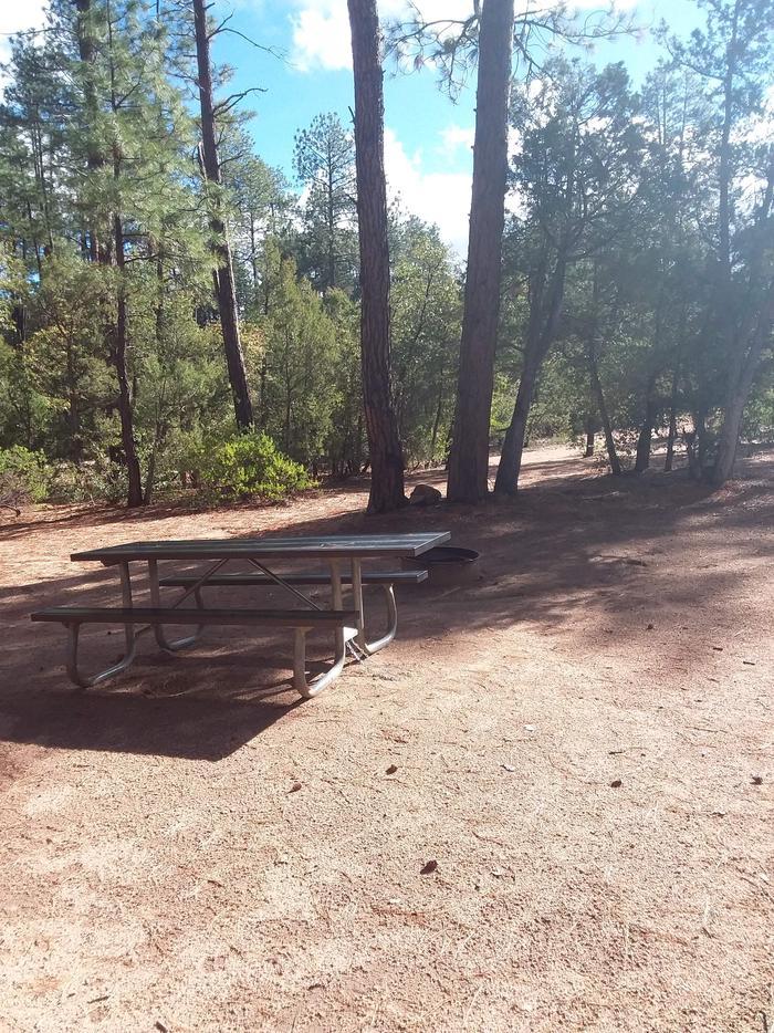 Houston Mesa, Black Bear Loop site #04 and camping space with a table, and treesHouston Mesa, Black Bear Loop site #04