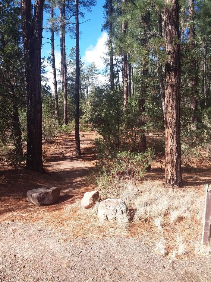Houston Mesa, Black Bear Loop site #05