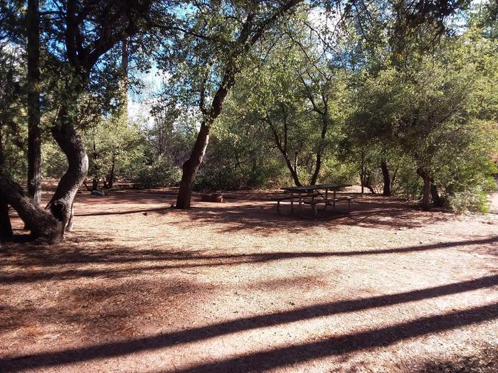 Houston Mesa, Black Bear Loop site #17 Table in the shade of nearby treesHouston Mesa, Black Bear Loop site #17