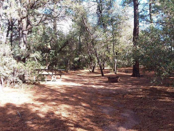 Houston Mesa, Mountain Lion Loop site #07 fire ring and table in dense treesHouston Mesa, Mountain Lion Loop site #07