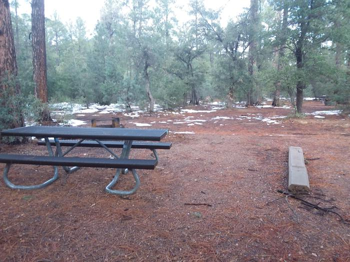 Timber Camp Rec. Area And Group CG - Site 11 - table, and fire pit (just behind table)Timber Camp Rec. Area And Group CG - Site 11