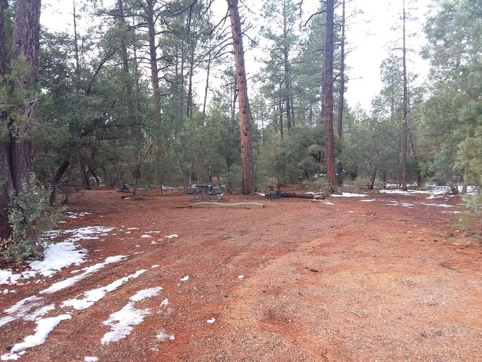 Timber Camp Rec. Area And Group CG - Site 11 - site parkingTimber Camp Rec. Area And Group CG - Site 11