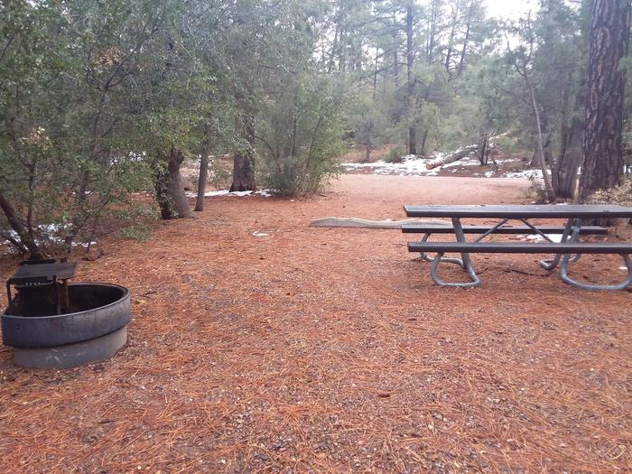 Timber Camp Rec. Area And Group CG - Site 13 - table, fire pit - alternate viewTimber Camp Rec. Area And Group CG - Site 13