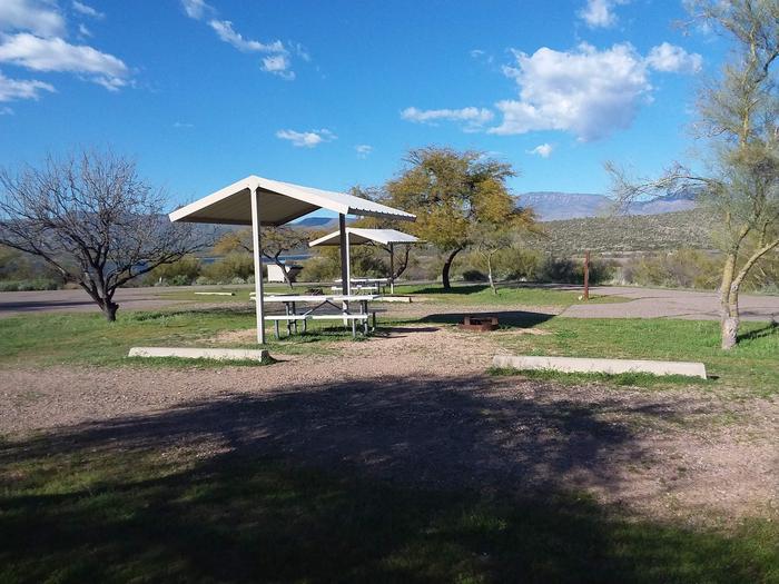 Windy Hill Campground Chipmunk Site 242