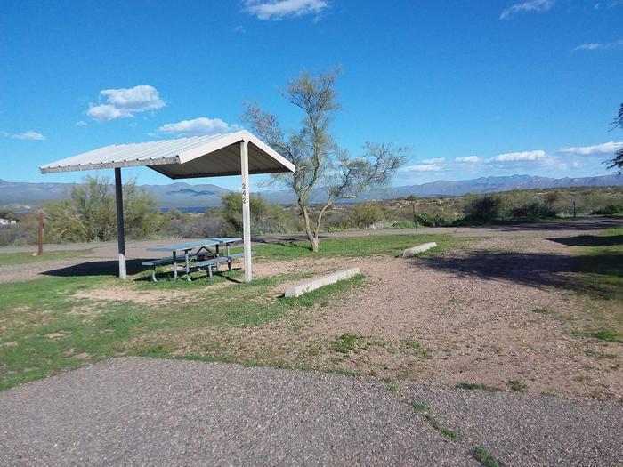 Windy Hill Campground Chipmunk Site 242: parkingWindy Hill Campground Chipmunk Site 242