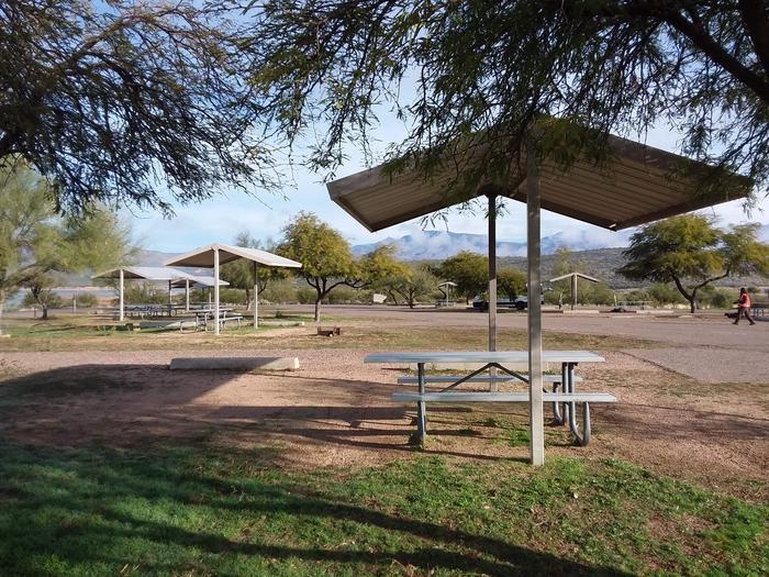 Windy Hill Campground Chipmunk Site 248: shade structure, table, fire pitWindy Hill Campground Chipmunk Site 248
