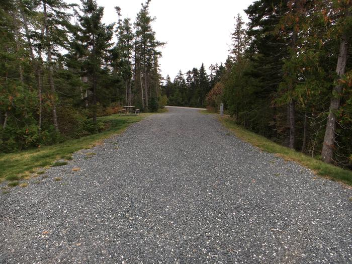 A photo of Site B20 of Loop B-Loop at Schoodic Woods Campground with Picnic Table, Electricity Hookup, Fire Pit, Water Hookup