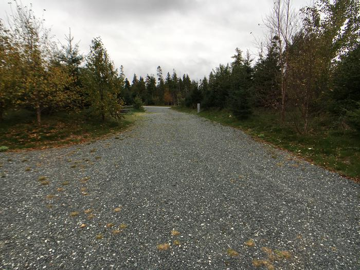 A photo of Site B22 of Loop B-Loop at Schoodic Woods Campground with Picnic Table, Electricity Hookup, Fire Pit, Water Hookup