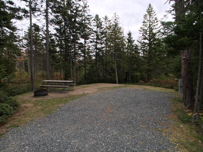 A photo of Site A49 of Loop A-Loop at Schoodic Woods Campground with Picnic Table, Electricity Hookup, Fire Pit
