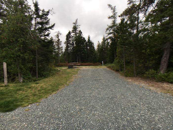 A photo of Site A22 of Loop A-Loop at Schoodic Woods Campground with Picnic Table, Electricity Hookup, Fire Pit