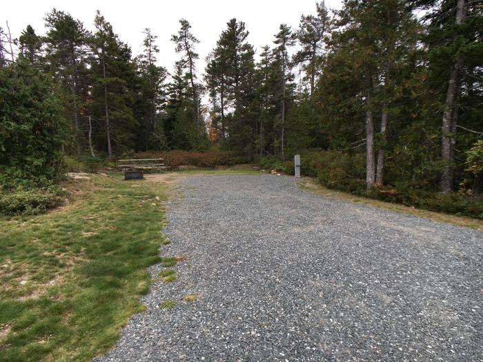 A photo of Site A10 of Loop A-Loop at Schoodic Woods Campground with Picnic Table, Electricity Hookup, Fire Pit
