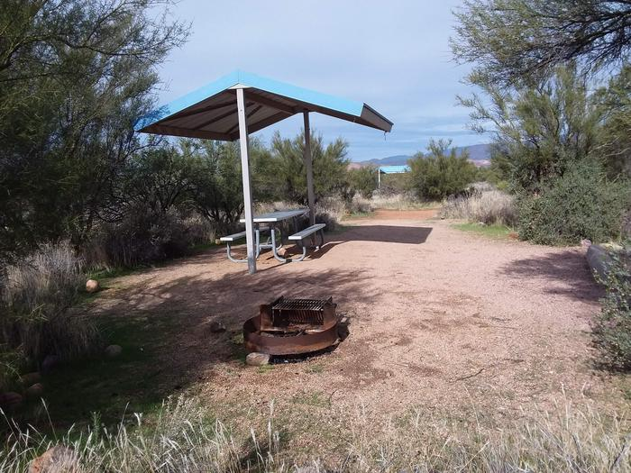 Site 6 with a picnic table, fire ring, shade structure, and parking.