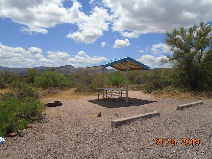 Campsite 15 at Cholla CampgroundCampsite 15, Cholla Campground