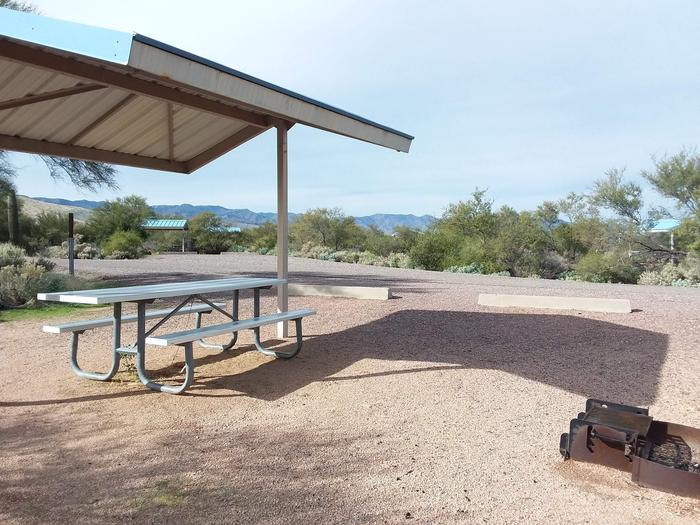Campsite 15 at Cholla Campground with a picnic table, fire ring, and parking.