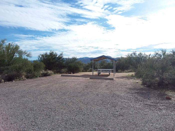 Campsite 17 at Cholla Campground parking area.