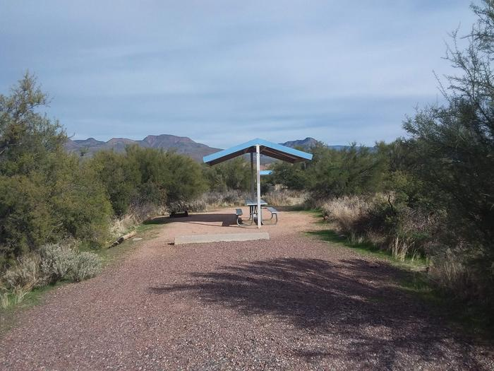 Campsite 29 at Cholla Campground with a picnic table, fire ring, shade structure, and parking.