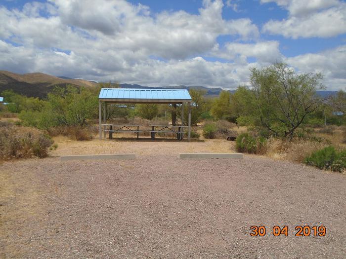 Campsite 41 at Cholla Campground Campsite 41, Cholla Campground