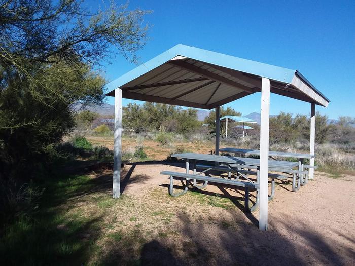 Campsite 43 at Cholla CampgroundCampsite 43, Cholla Campground