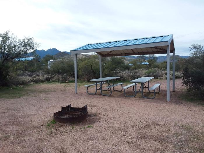 Campsite 49 at Cholla Campground with picnic tables, a fire ring, shade structure, and parking.