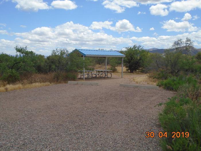Campsite 49 at Cholla CampgroundCampsite 49, Cholla Campground